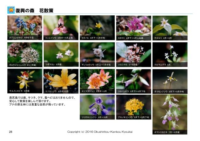 fukkou_hana01